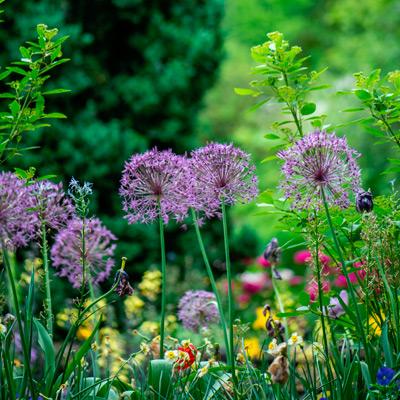 jardim-2-400x400.jpg
